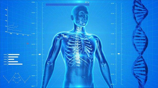 たけしの家庭の医学が2020年3月に終了!新番組は?