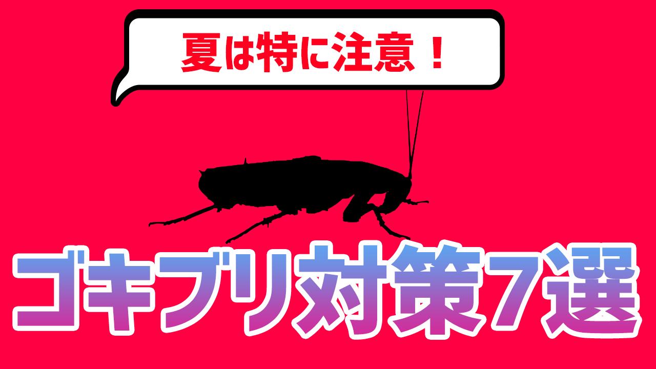 ゴキブリ対策を本気で考える!撃退方法7選