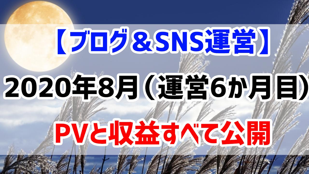 【ブログ&SNS運営】2020年8月(運営6か月目)のPVと収益すべて公開します
