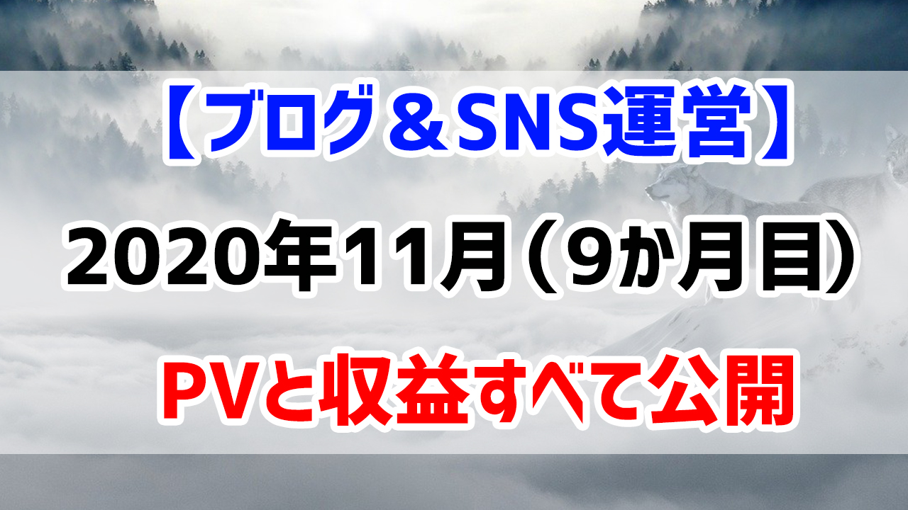 【ブログ&SNS運営】2020年11月(運営9か月目)のPVと収益すべて公開します