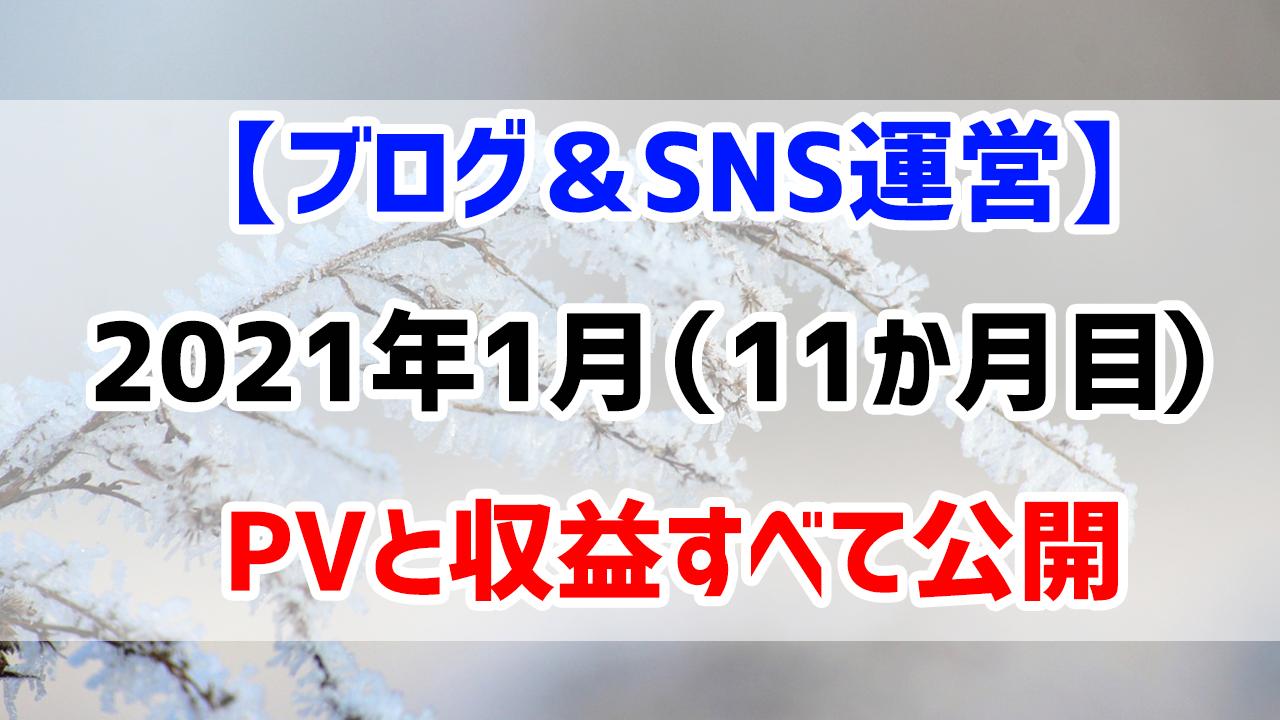 【ブログ&SNS運営】2021年1月(運営11か月目)のPVと収益すべて公開します