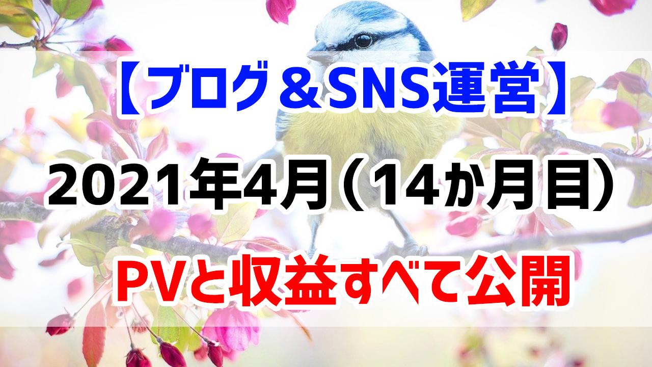 【ブログ&SNS運営】2021年4月(運営14か月目)のPVと収益すべて公開します