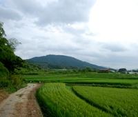 日本一のパワースポットと噂される三輪山とは!?
