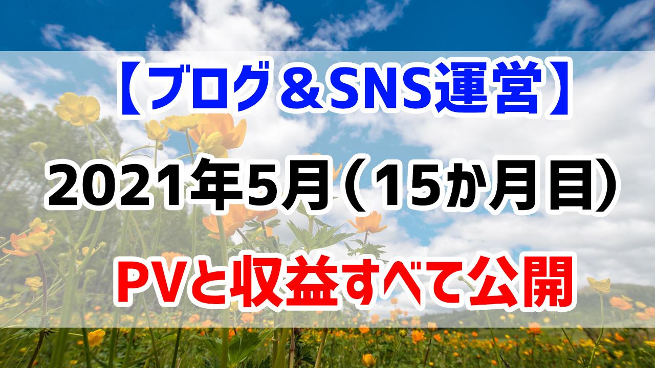 【ブログ&SNS運営】2021年5月(運営15か月目)のPVと収益すべて公開します