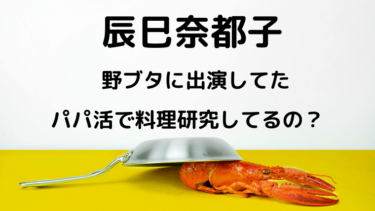辰巳奈都子は野ブタに出演していた!パパ活で料理研究しているの?