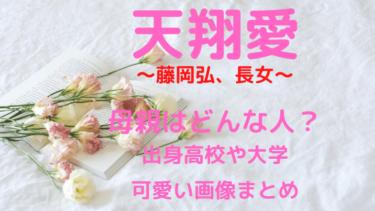 天翔愛(藤岡弘、長女)母親は?出身高校や大学・かわいい画像まとめ
